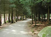 easy walking or cycling trails