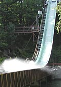 leave your stomach behind on the log flume ride