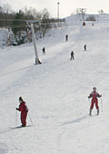 the beginners ski area